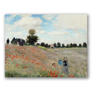 Campo de Amapolas - Monet